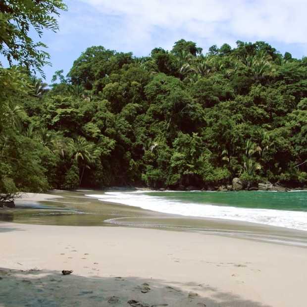 Beleef de woeste natuur van Costa Rica met deze sublieme beelden