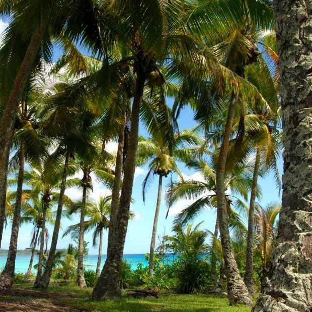 Nieuw-Caledonië, in het hart van de Stille Oceaan