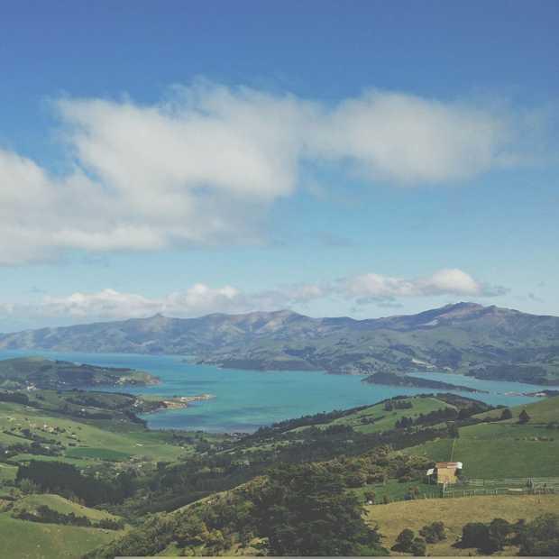Verliefd op Nieuw-Zeeland in 25 foto's