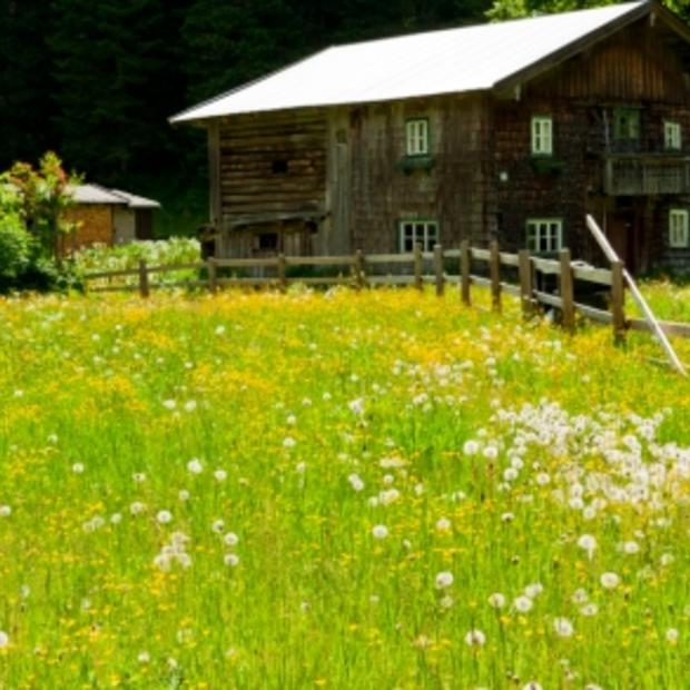 Natuur, wandelen en eten in het Salzburgerland (Oostenrijk) [Deel 3]