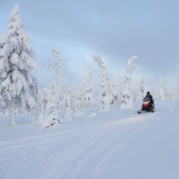 Eén maand overwinteren in Fins Lapland
