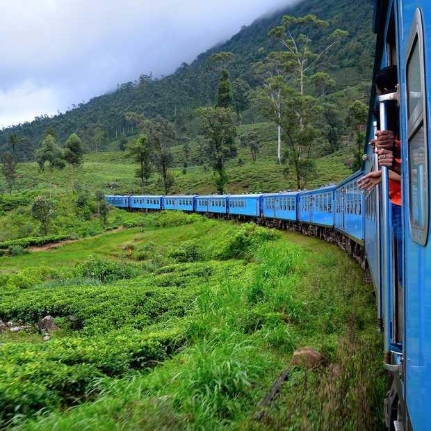 Sri Lanka, droomeiland in de Indische Oceaan