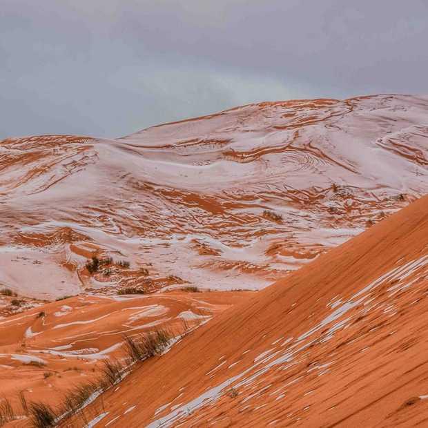 Het sneeuwt in de Sahara (voor het eerst in 40 jaar)
