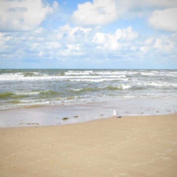To do in de herfst: heerlijk uitwaaien aan zee!