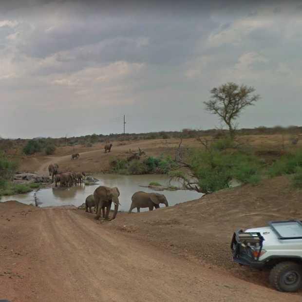 Alle Zuid-Afrikaanse nationale parken nu op Google Street View