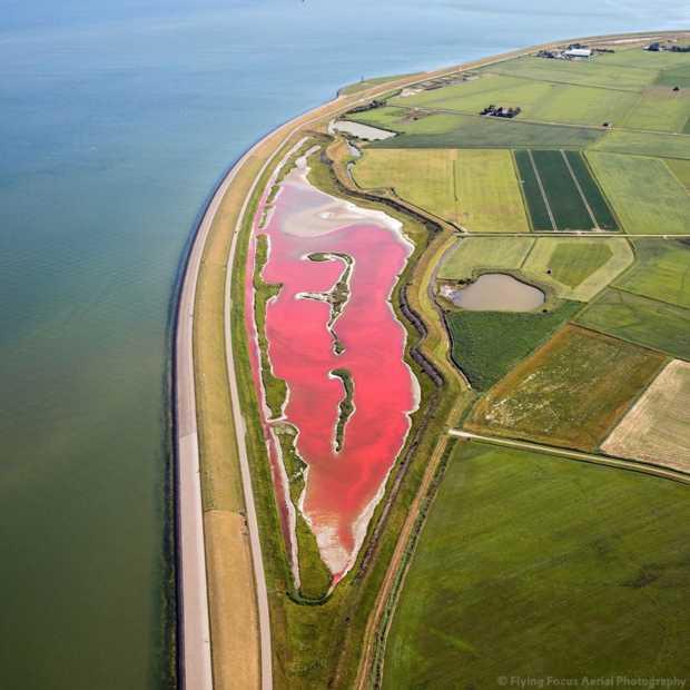 Texel heeft een roze meer