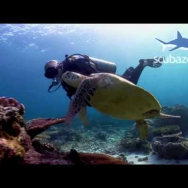 Video: Seaventures Dive Resort