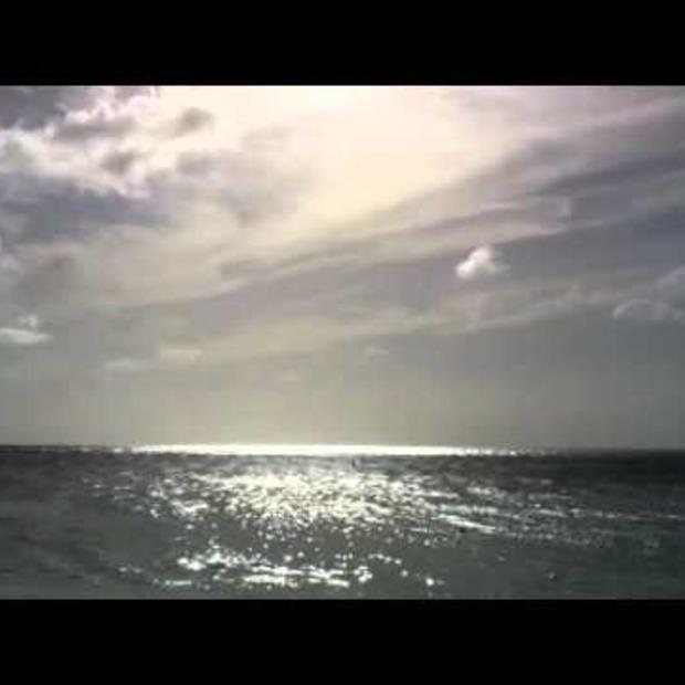 Video: Aruba