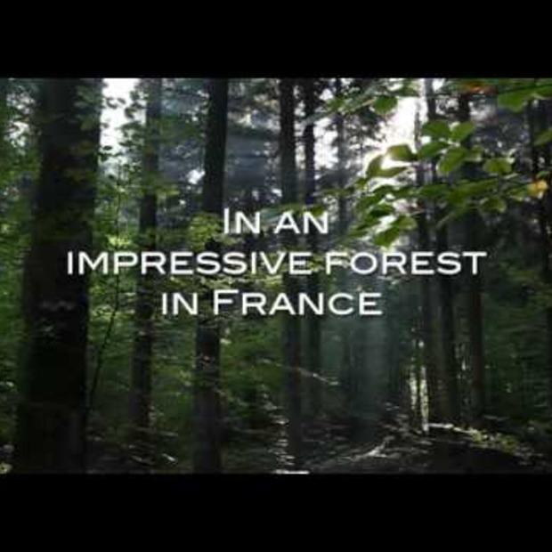 Video: Domaine des Trois Forêts