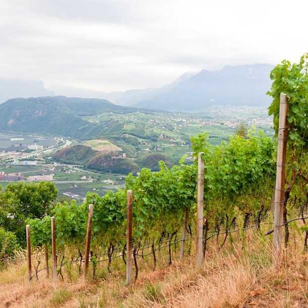Vakantie op de boerderij in Zuid-Tirol, Italië