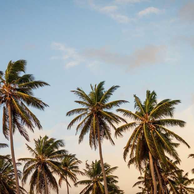 De vakantiemarkt in 2015: we gaan verder weg en willen meer luxe