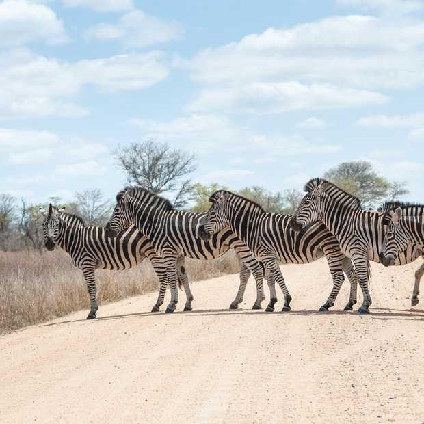 Maak jouw Zuid-Afrikaanse soundtrack en win een reis!