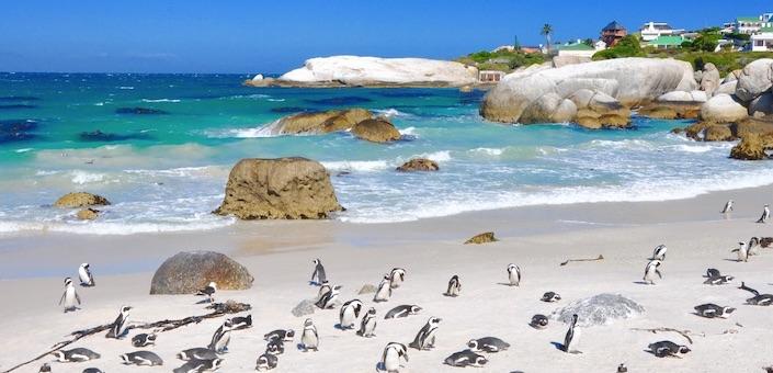 De schoonheid van Kaapstad in 30 foto's