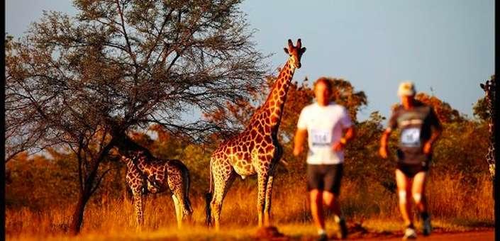De mooiste plekken ter wereld om een marathon te lopen