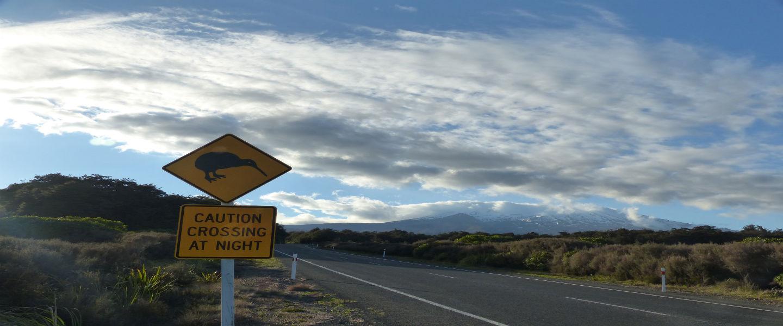 Moving on in Nieuw-Zeeland: Lord of the Rings, geisers en veel meer