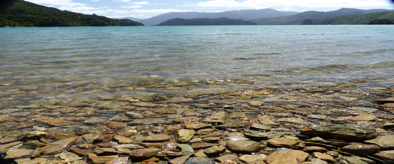 4 dingen die Nieuw-Zeeland zo bijzonder maken!