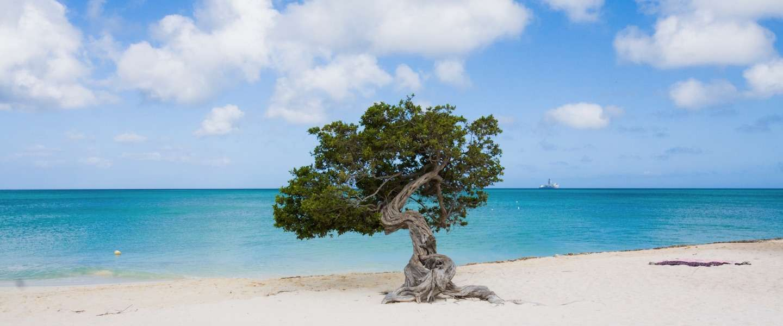 Waarom Aruba one happy island is