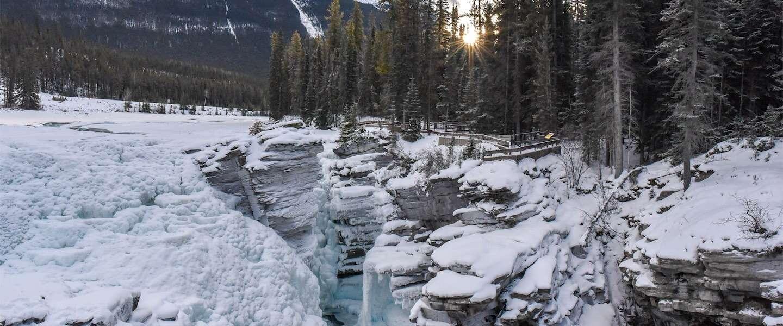 Athabasca Falls is de mooiste waterval in Jasper, Canada