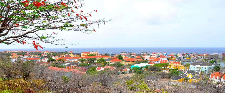 Snoep scheppen bij Jamin Zuikertuin op Curaçao
