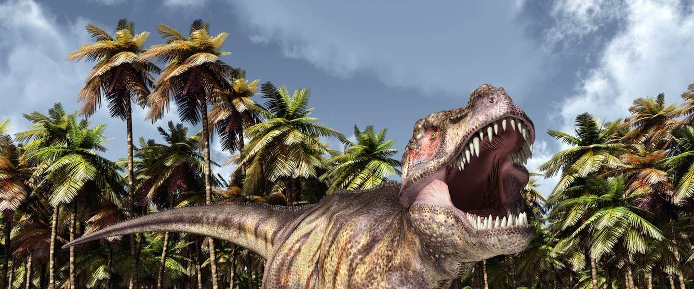 Reisfoto's zijn zoveel leuker met dinosaurussen