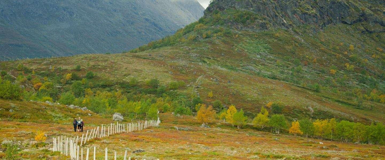 Op reis naar Fjell Noorwegen? Dit moet je gedaan hebben