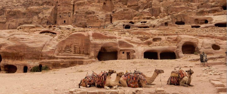 Ontdek de geheimen van Petra in Jordanië