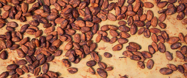 Zwitserse stad bedolven onder cacao door foutje bij chocoladefabriek