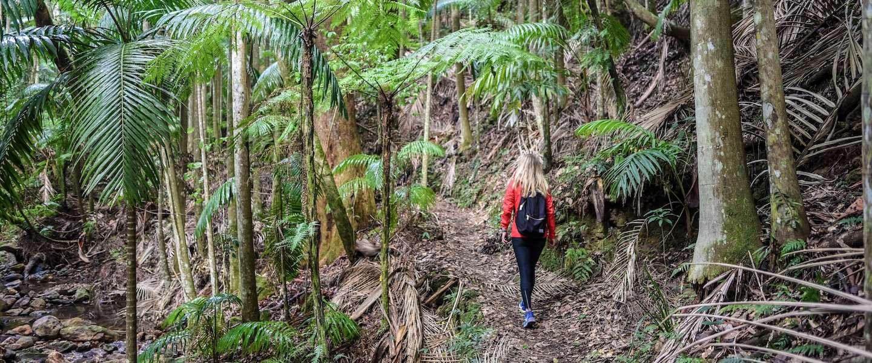 Dit zijn de 7 mooiste hikes voor op je bucketlist