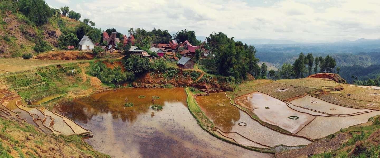 Het andere Indonesië: zadelhuizen en spookdiertjes op Sulawesi