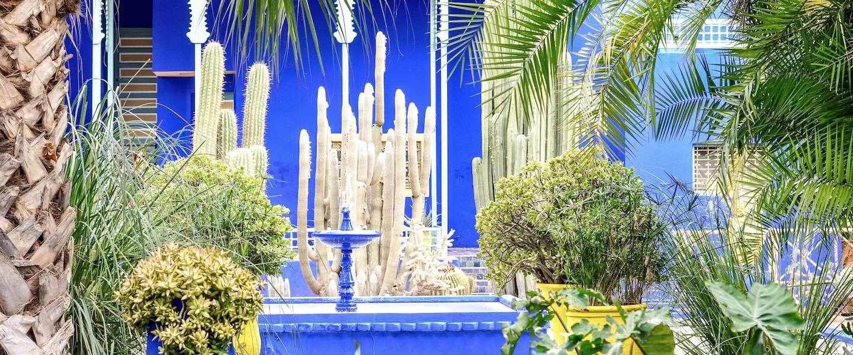 Jardin Majorelle: de kleurrijkste plek in Marrakech