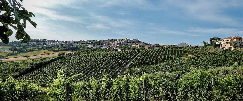 De vijf leukste dingen om te doen in Le Marche, Italië