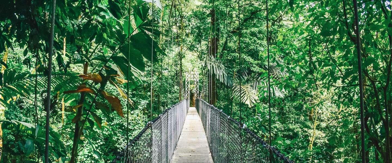 Ontdek de mooiste plekken van Costa Rica met een actieve rondreis