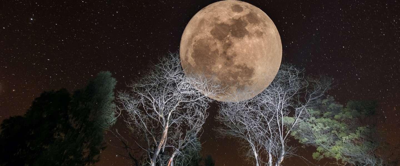 Vannacht is de mooiste supermaan van dit jaar te zien