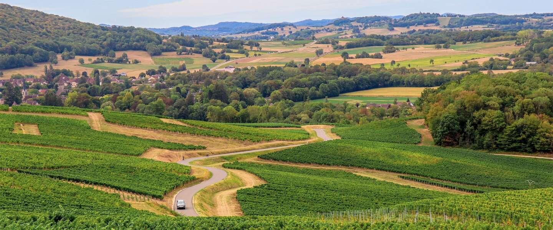 Dit zijn de 6 mooiste wijnroutes in Europa