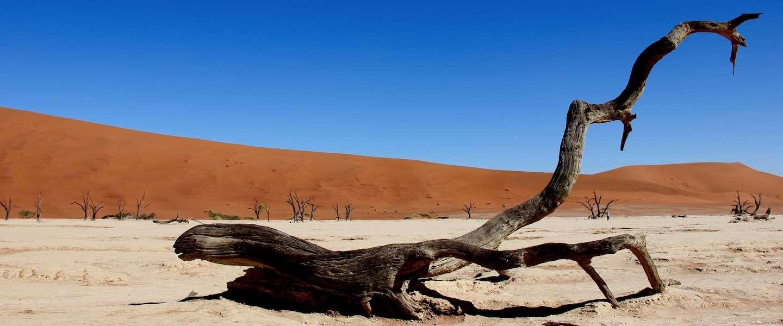 8 redenen om verliefd te worden op Namibië