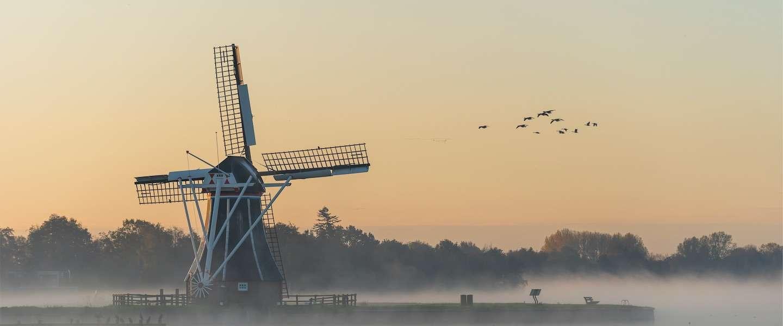 10 Nederlandse natuurfotografen om te volgen op Instagram