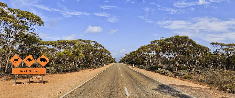 Van Melbourne naar Sydney: de leukste plekjes onderweg