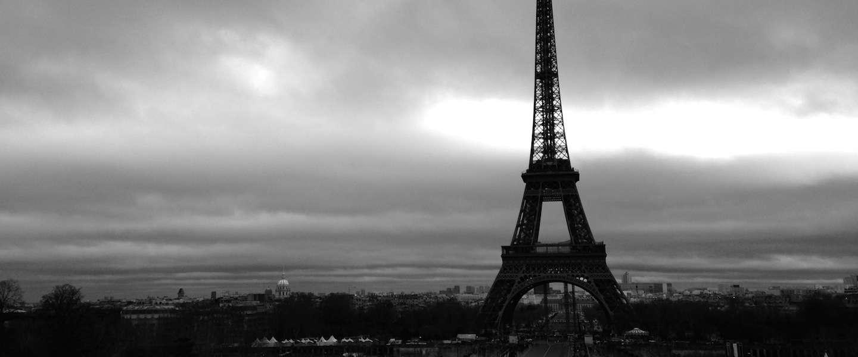 Na Londen nu ook een kattencafé in Parijs