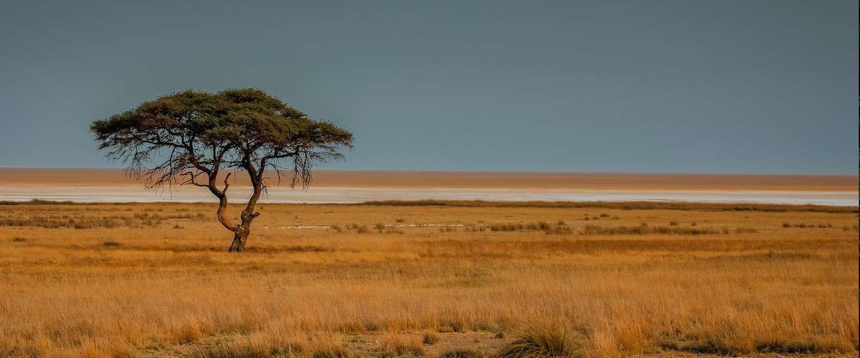 Jeepsafari in Pumba private game reserve