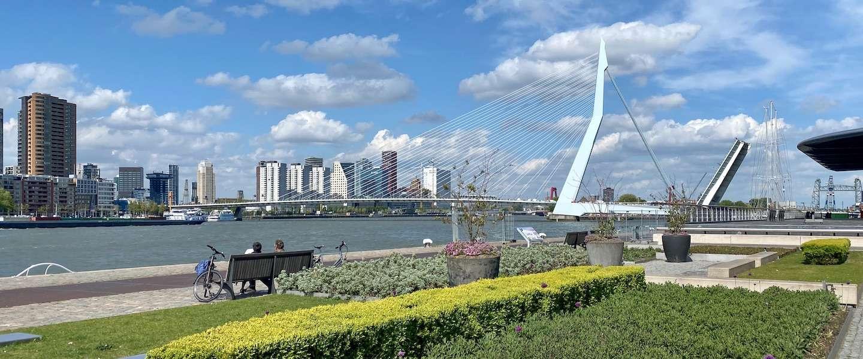 De vijf mooiste, zeldzaam groene plekken in Rotterdam