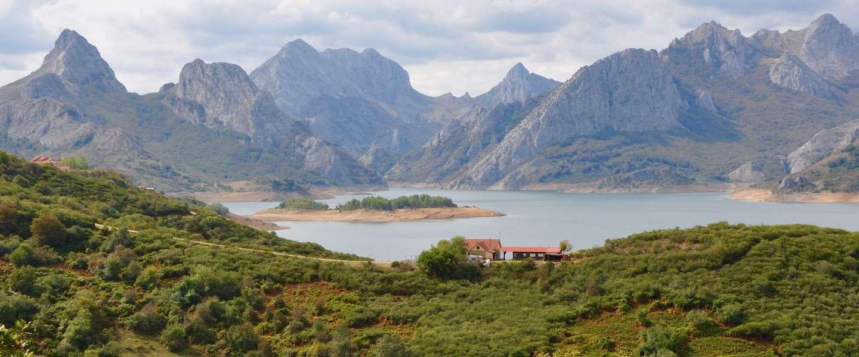 Op safari in Noord-Spanje: op zoek naar wilde beren en wolven