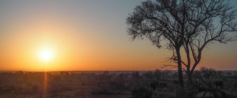 Zo maak je een duurzame, virtuele reis naar het Afrikaanse continent