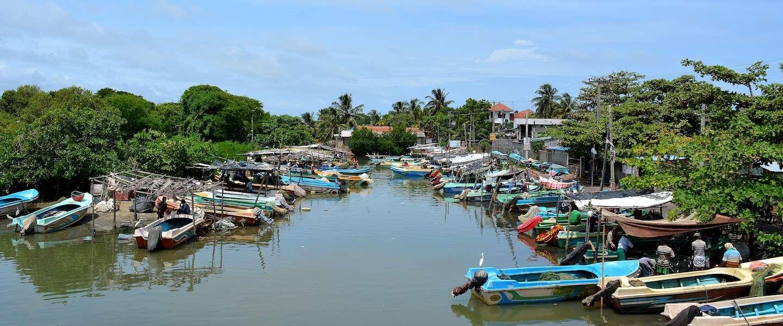 Tips voor het aanvragen van een visum voor Sri Lanka