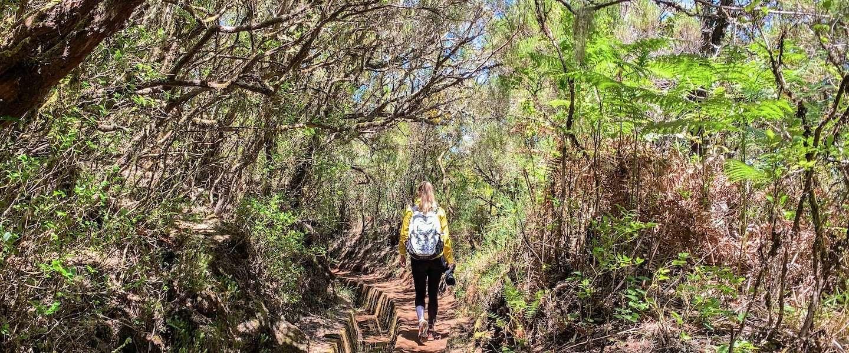 Wandelen op Madeira: ontdek de levada's op het bloemeneiland