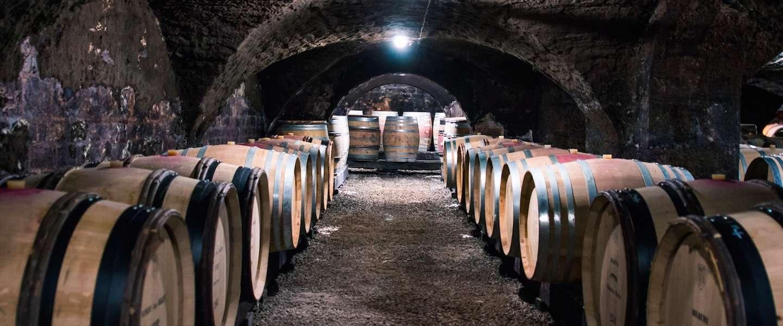 Tour de France: deze route legt een druif af tot het wijnglas