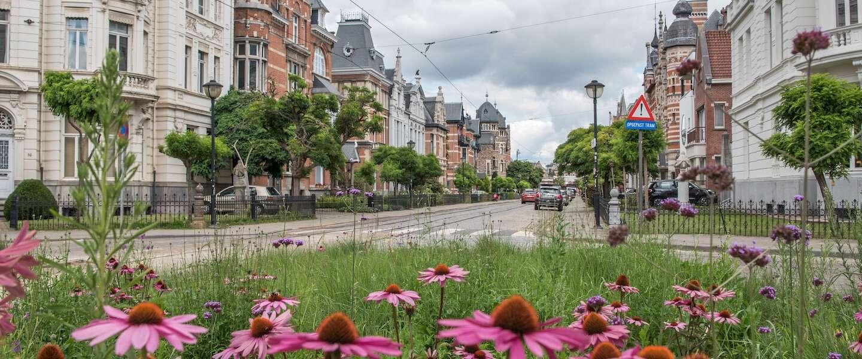 Zurenborg is de mooiste wijk van Antwerpen
