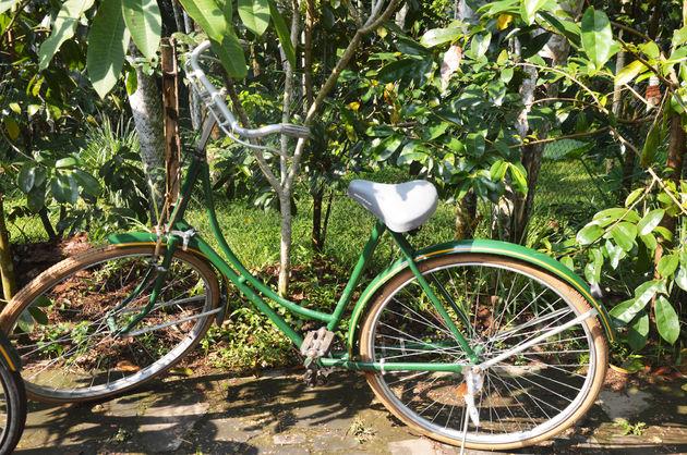 21-java-fiets