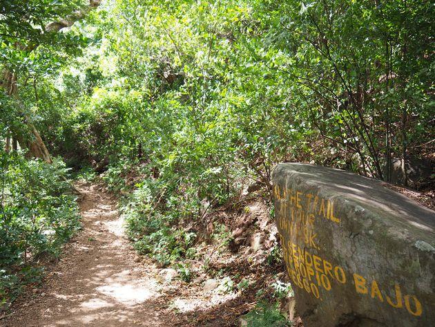 3. Hike naar Cascada San Ramon op Ometepe