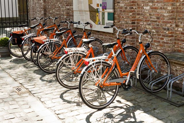 fietsen_in_de_leiestreek