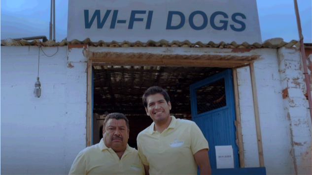 Wi-Fi-dogs-Travel-Surf
